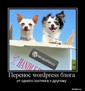Перенос wordpress блога